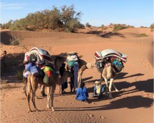 Yoga Nature Maroc
